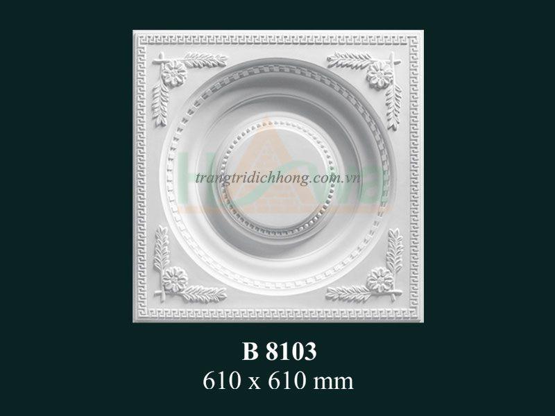 phu-dieu-thach-cao-b-8103