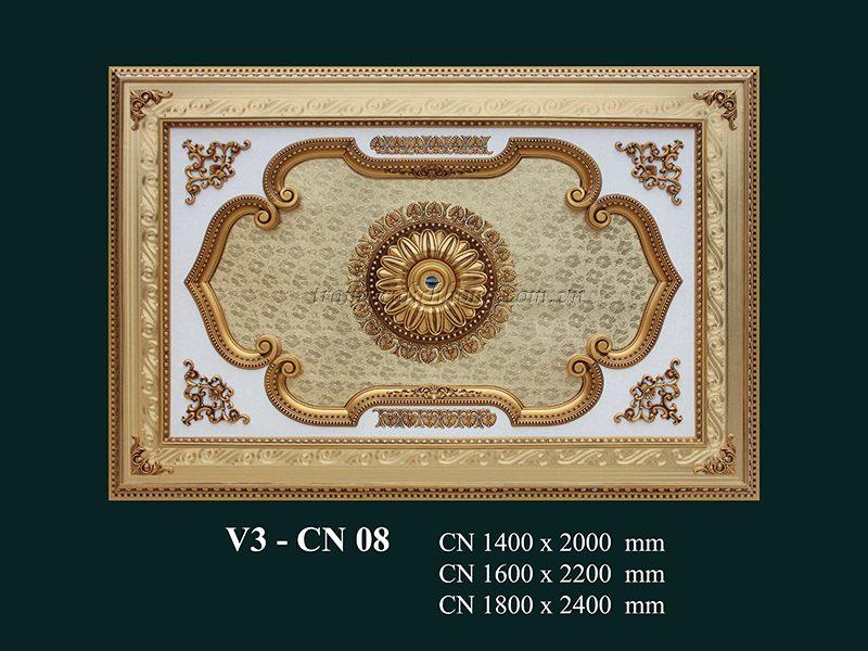 tầm trần nghệ thuật v3 – cn 08jpgv3 – cn 08
