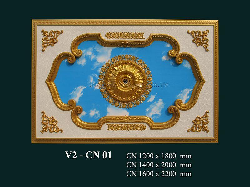 v2 – cn 01jpgv2 – cn 01